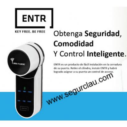 Cerradura Mul-T-Lock ENTR