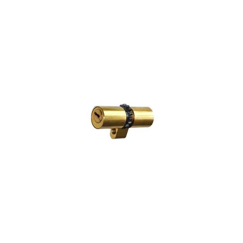 Cilindro MUL-T-LOCK MT5+ (Perfil Suizo Para Arcu)