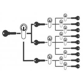 Igualacion / Amaestramiento de llaves